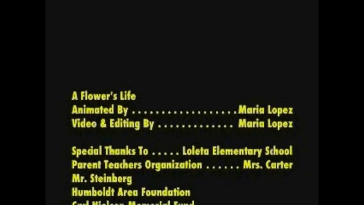 flowerslife