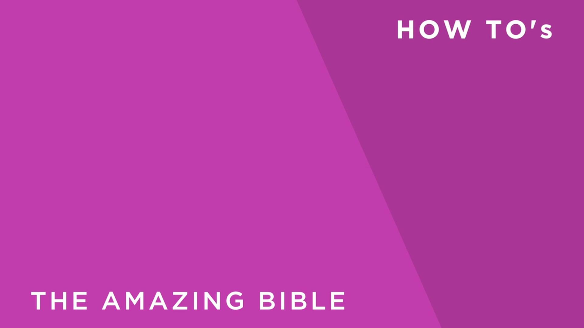 The Amazing Bible