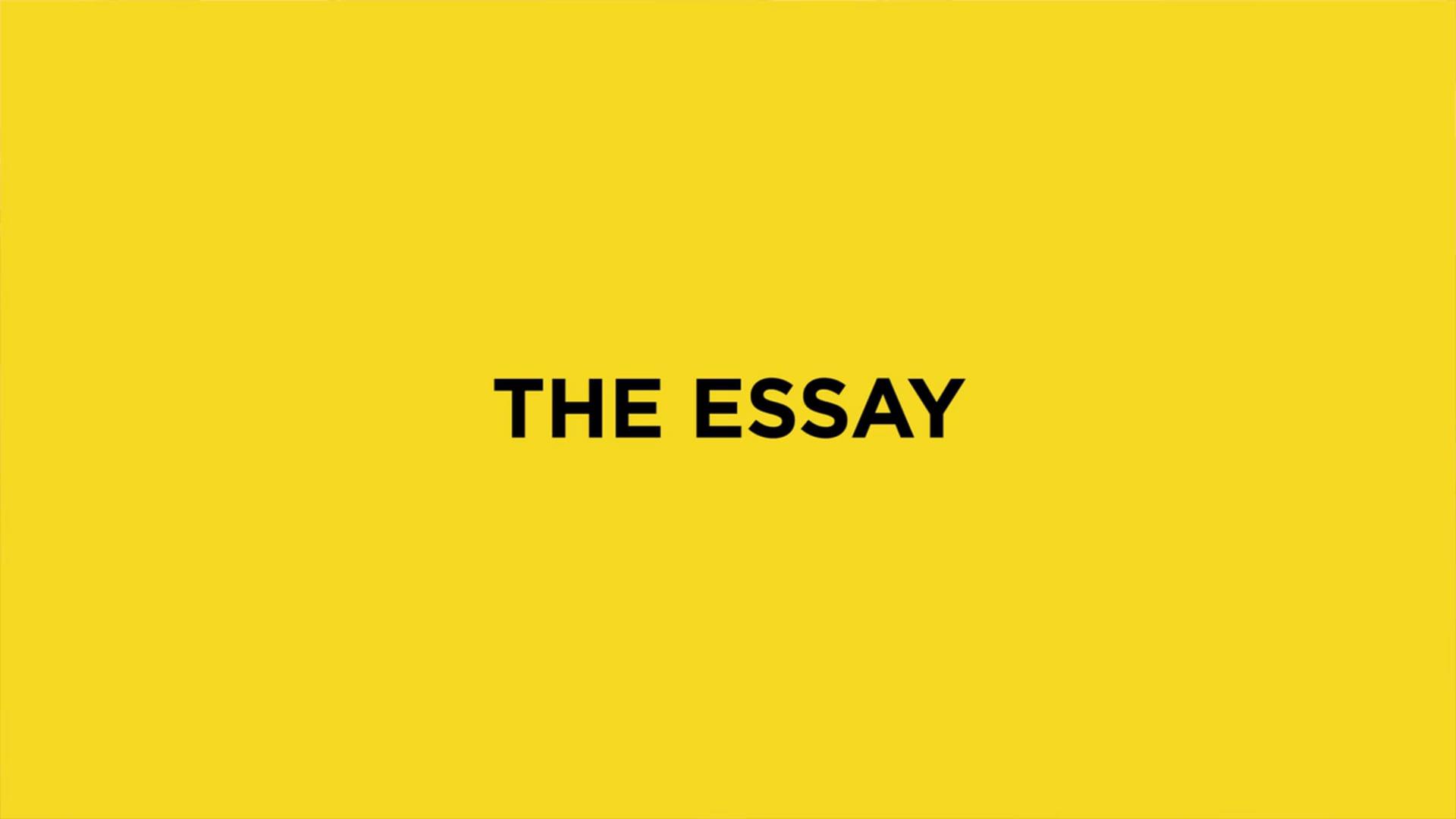 Twinston The Essay