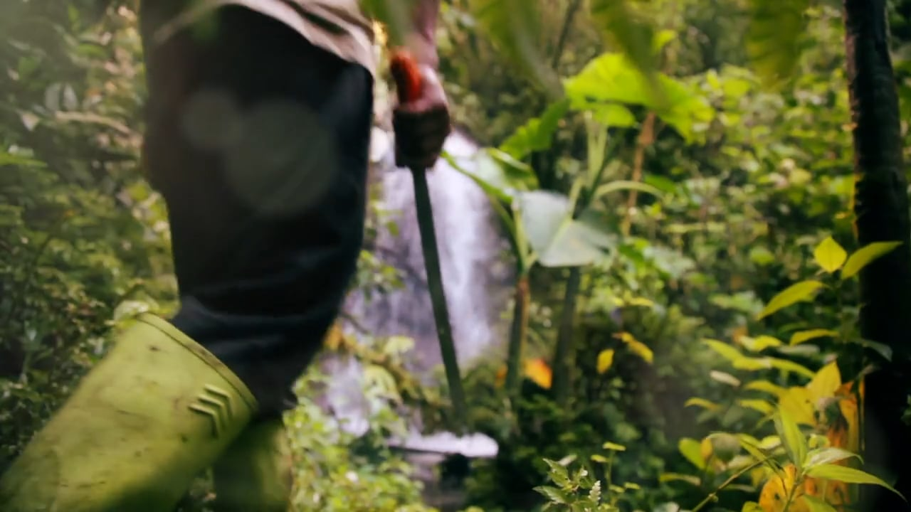 A Film about Coffee and Conservation