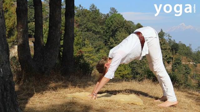 Kriya voor vitaliteit en uithoudingsvermogen