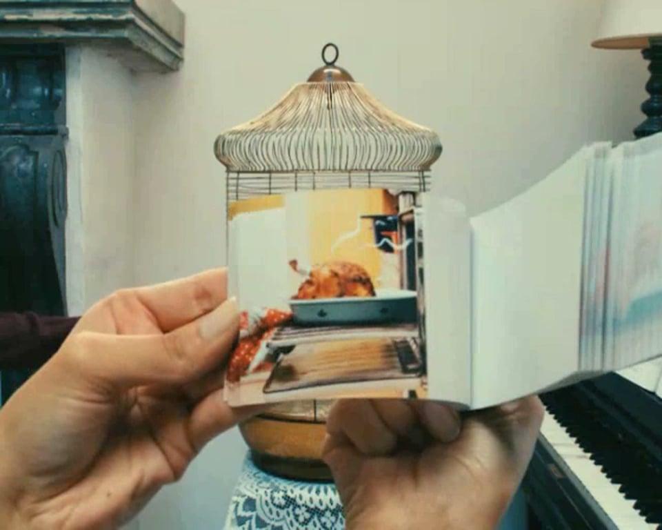 FOXcult_birdcage
