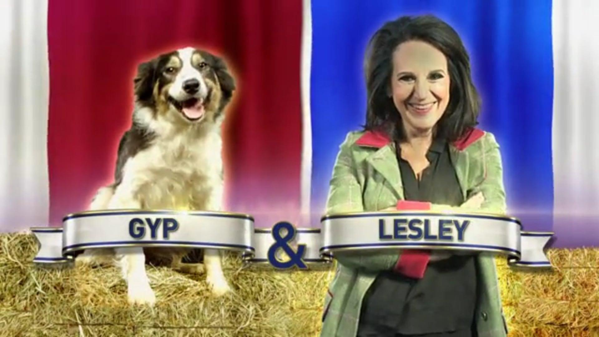 Flockstars Series 1: Lesley Joseph Training VT