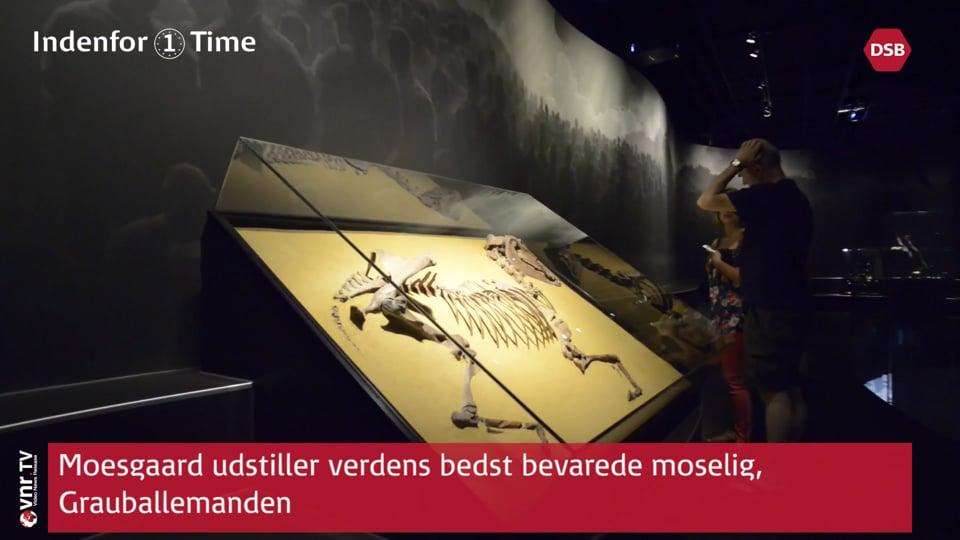 Indenfor 1 Time - Aarhus - Den Gamle By - Moesgaard Museum