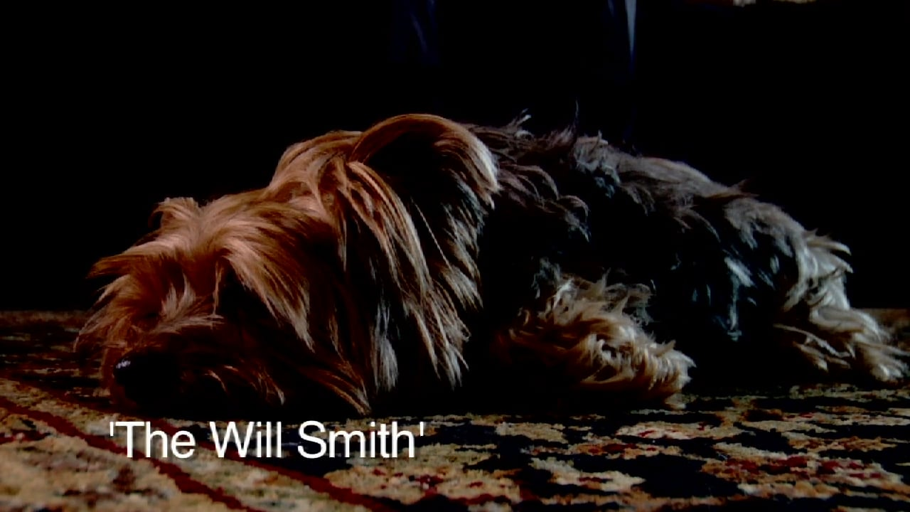 #3 THE WILL SMITH