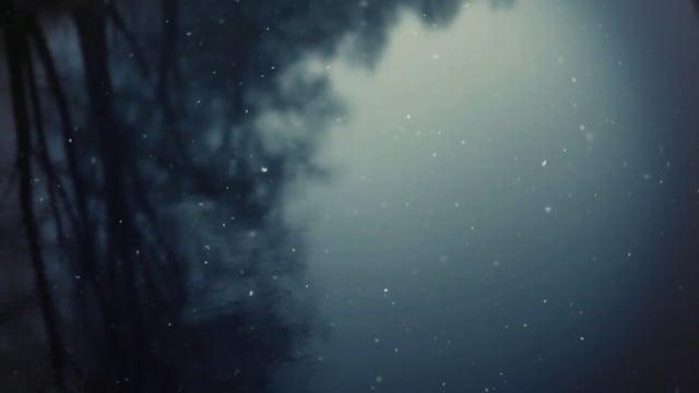 """MOZART // BRAHMS """"String Quintets"""" by Quatuor Voce & Lise Berthaud - Official Album Trailer"""