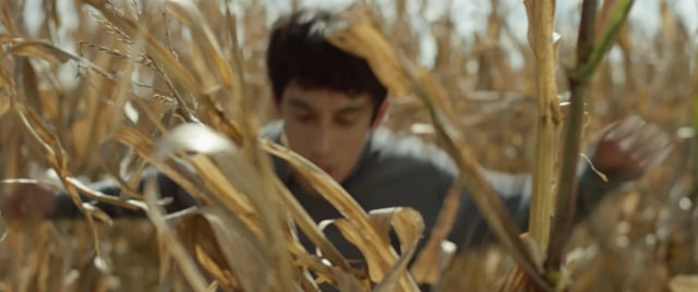In the Shadows of the Cornfields (Short Film Trailer)