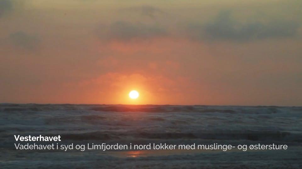 Indenfor 1 Time - Vestjylland - Dansk version