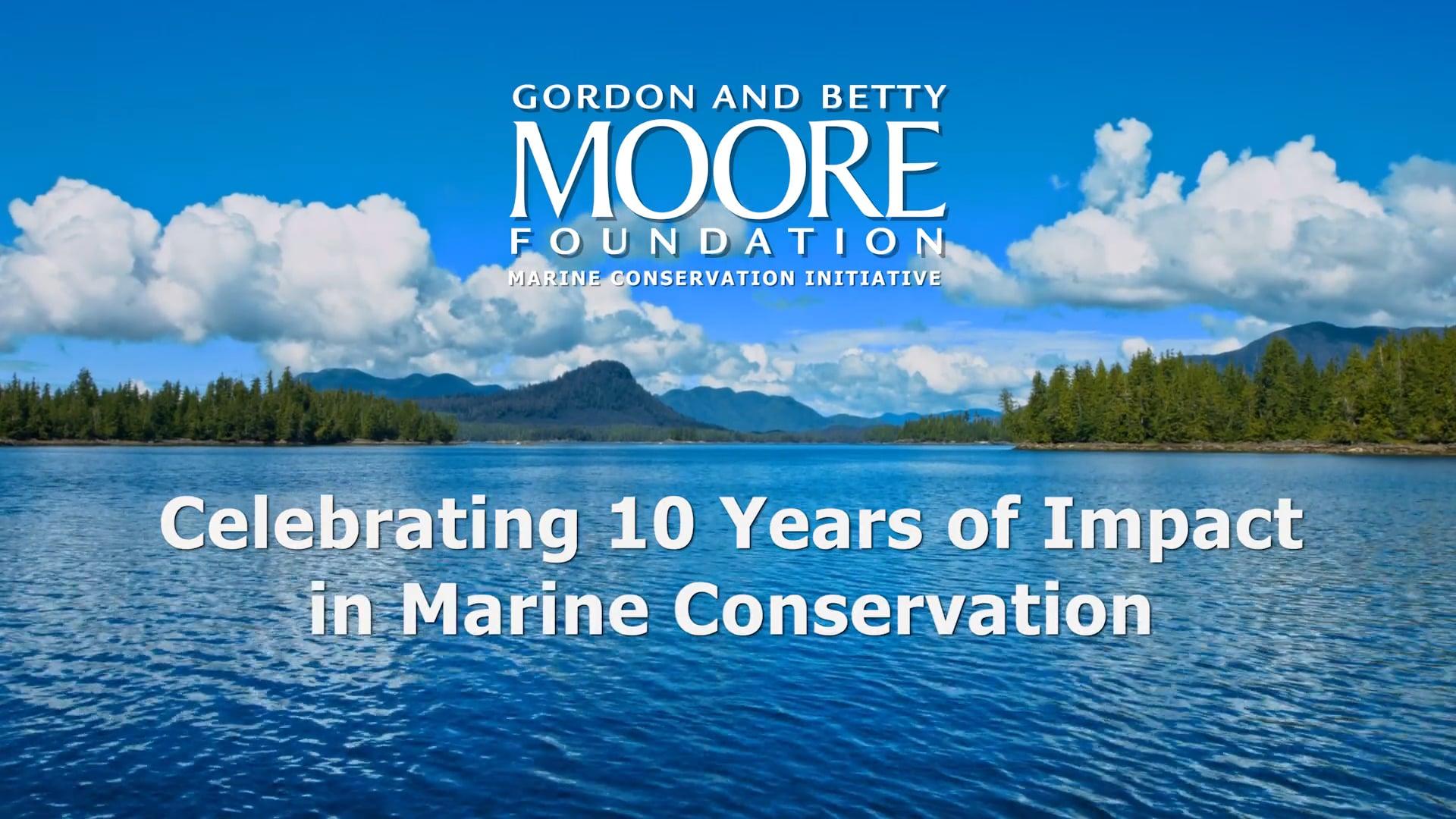Celebrating 10 Years of Marine Conservation