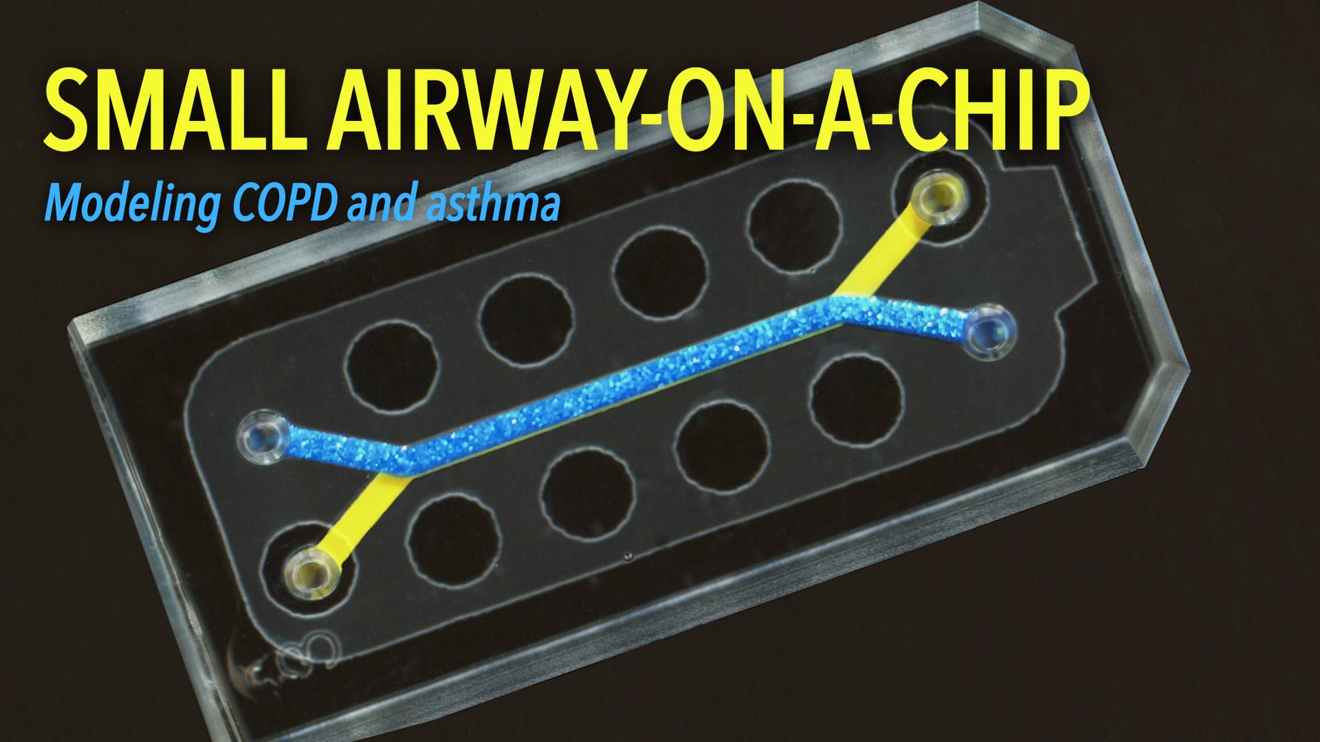 Small Airway-on-a-Chip: Modeling COPD and Asthma