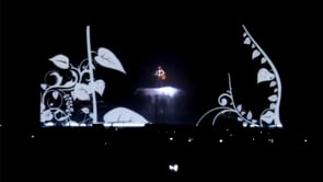 SHOWS MUSICAIS / music concerts video design