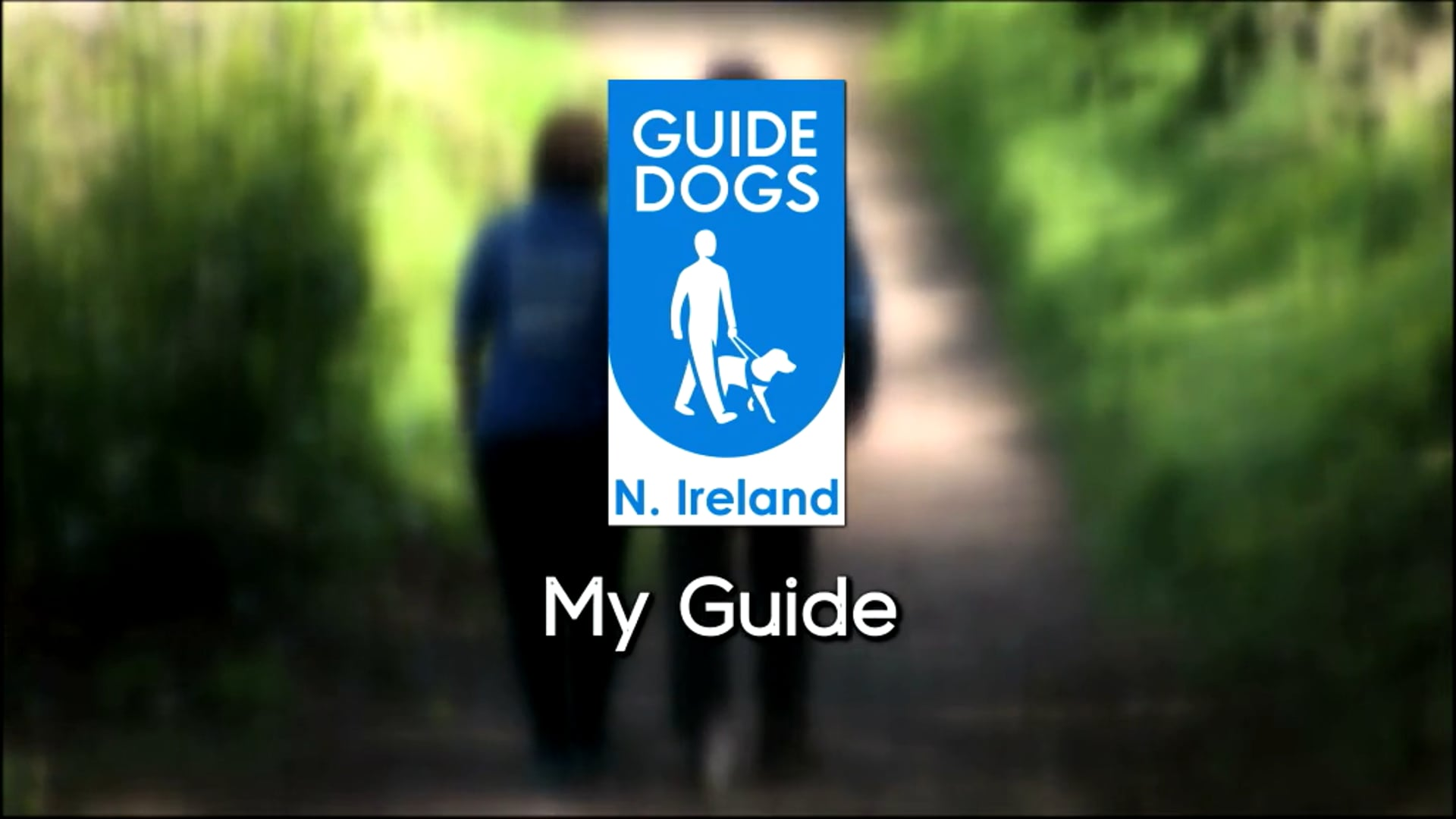 My Guide Dogs Northern Ireland