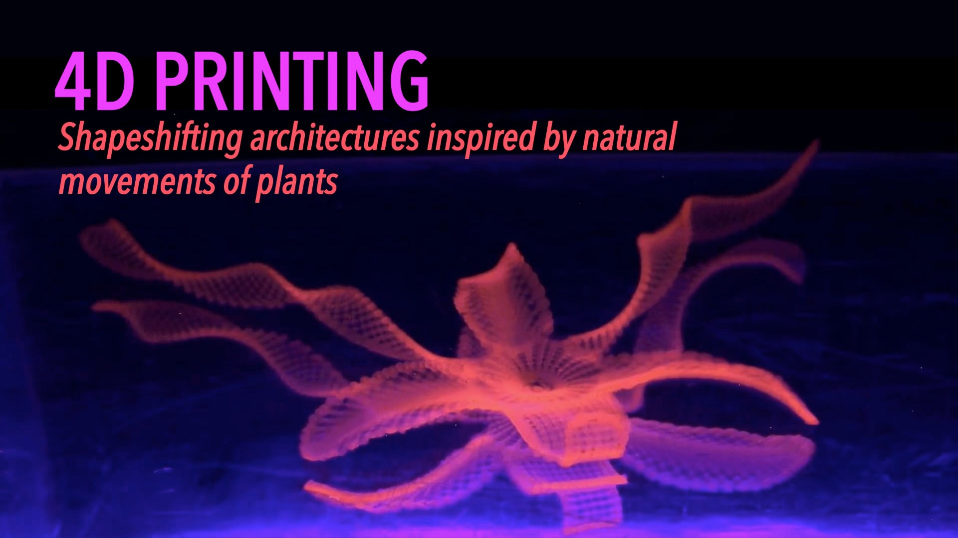 4D Printing: Shapeshifting Architectures