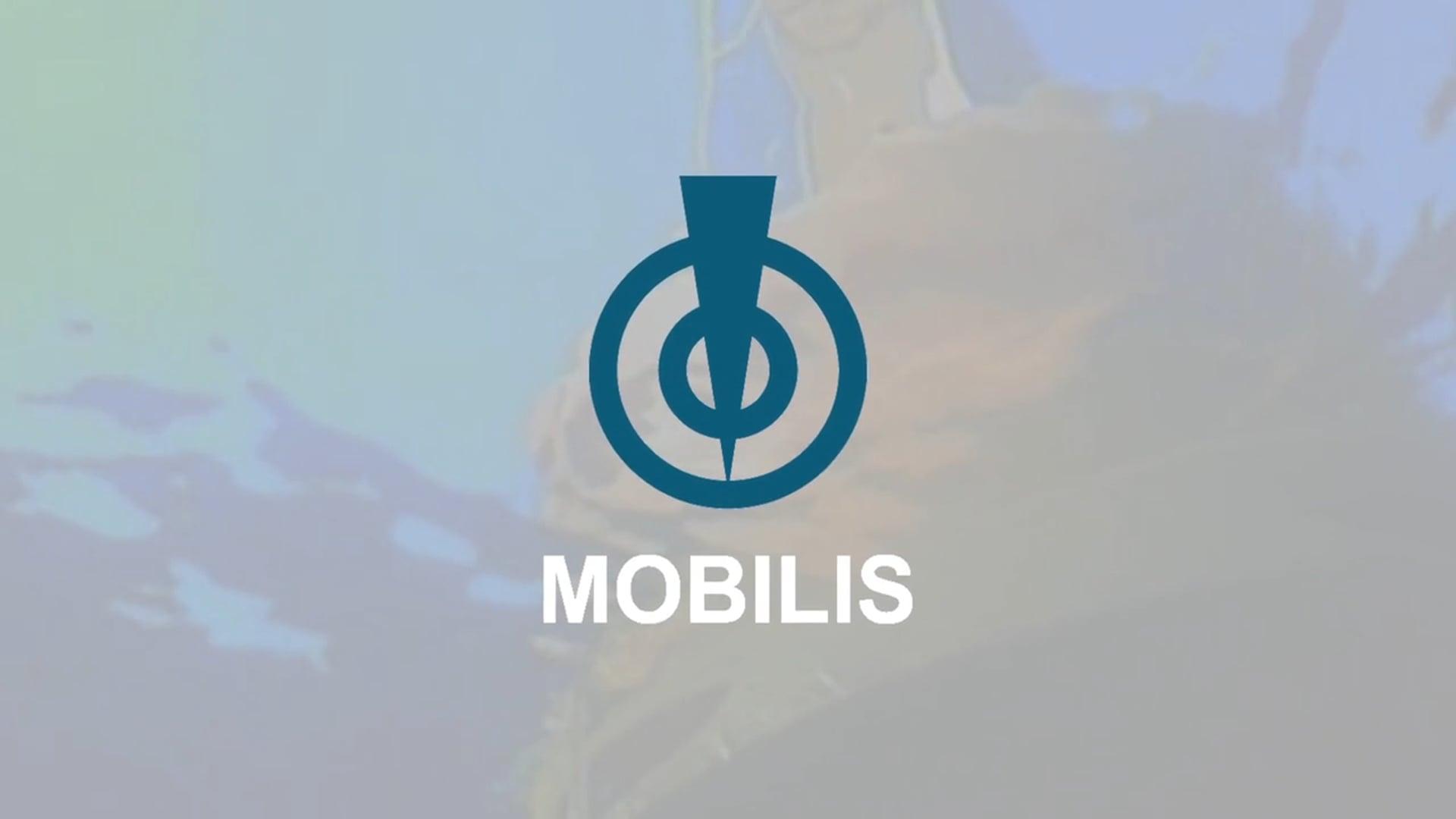 VIDEO COMMUNICATION - MOBILIS