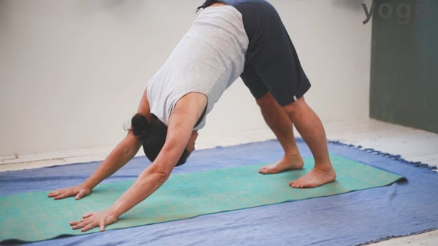 Yoga for the Super Busy Person