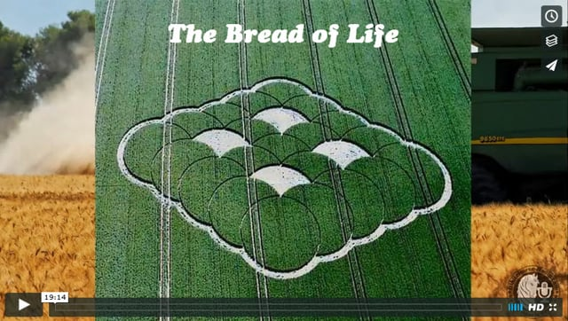 Jesus Is the The Bread of Life