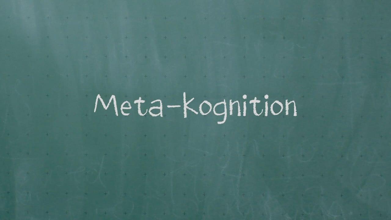 Meta-Kognition