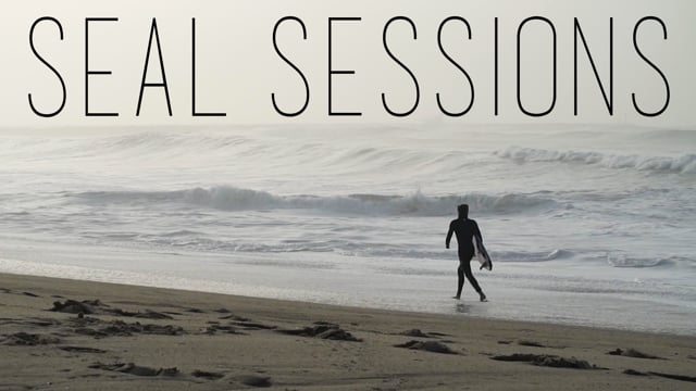 Seal Sessions // January 2016 from Skylar Wilson