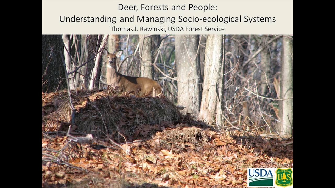Session 2: Deer, Forests & People: Understanding & Managing  Socio-ecological Systems by Tom Rawinski, USDA Forest Service