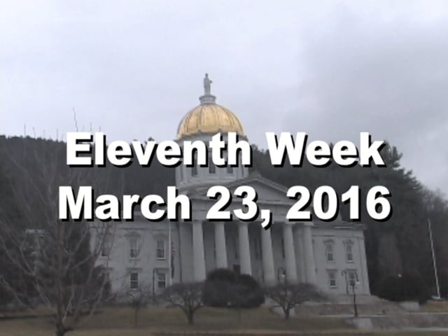Under The Golden Dome 2016 Week 11