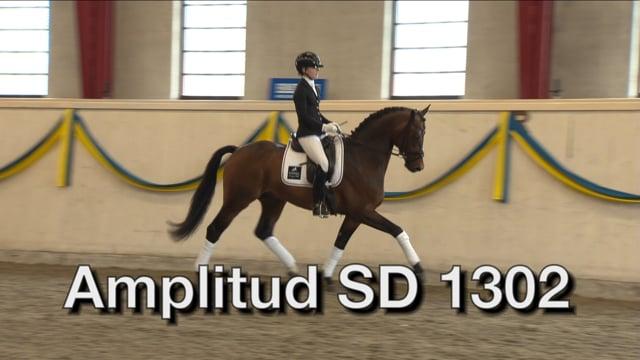 Amplitud SD 1302 -