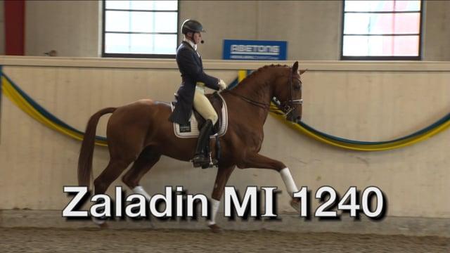 Zaladin MI  1240 -