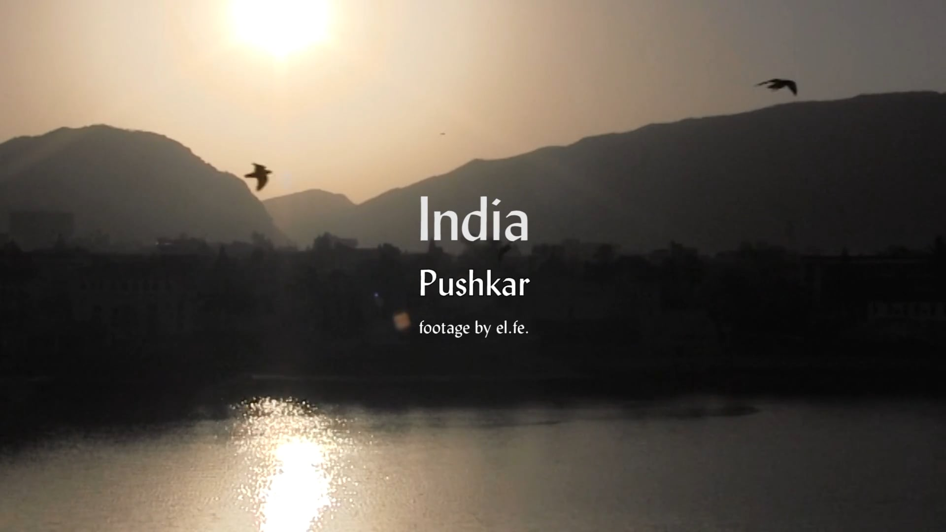 India. Pushkar. footage