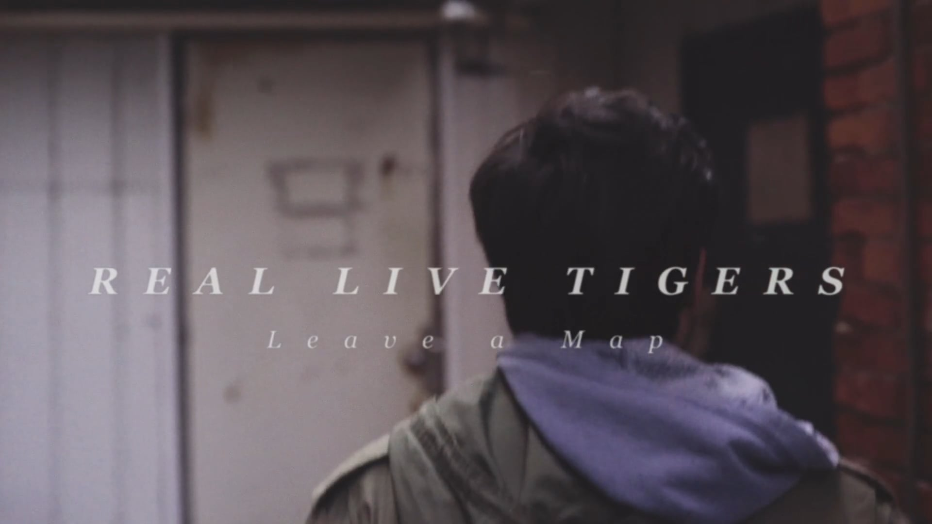 Real Live Tigers - Leave a Map