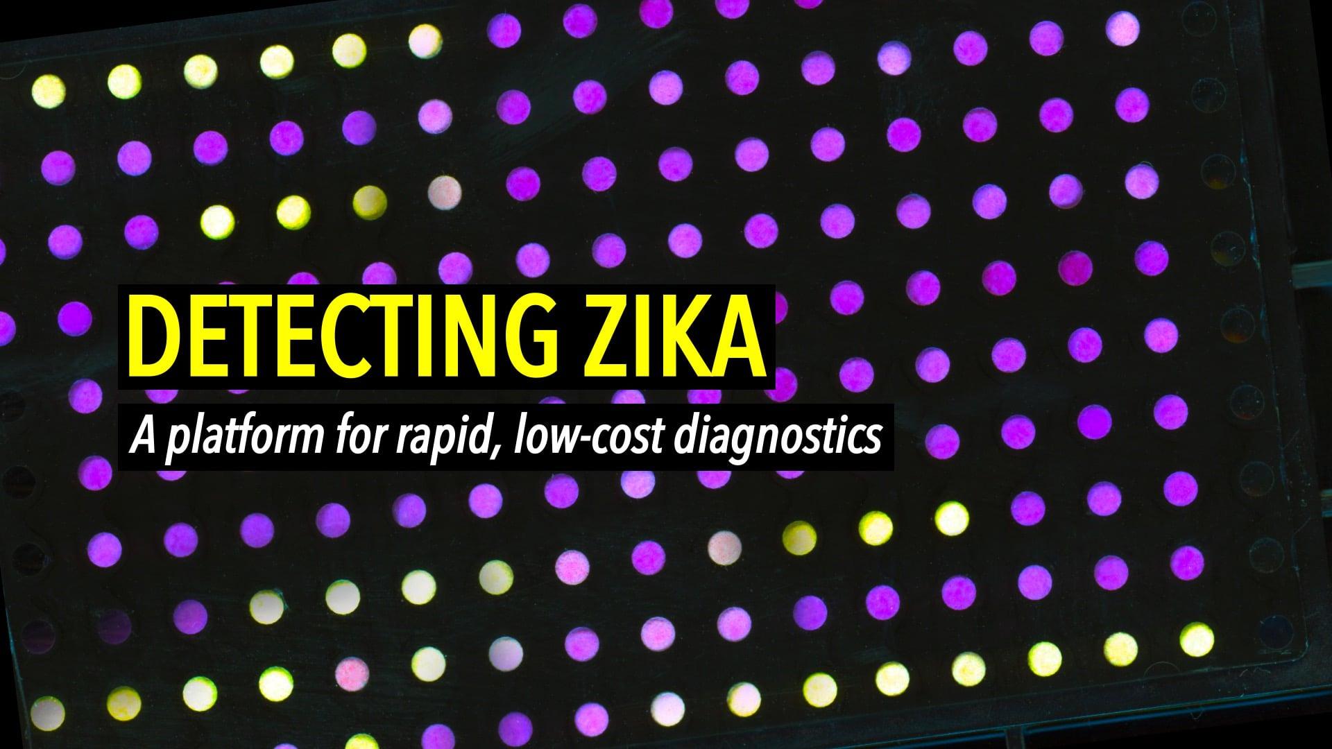 Detecting Zika: A platform for rapid, low-cost diagnostics