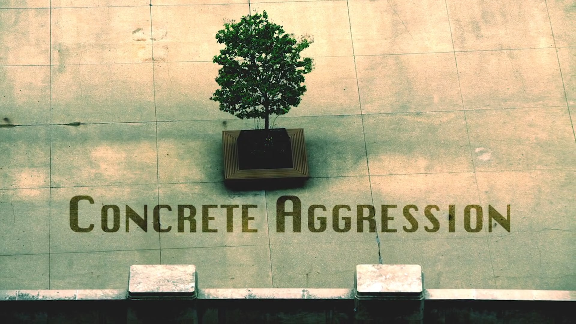 Concrete Aggression