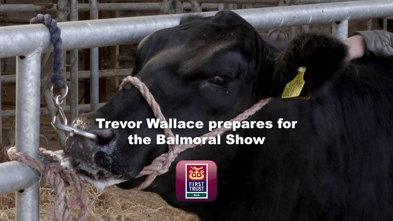 Trevor Wallace Balmoral Show
