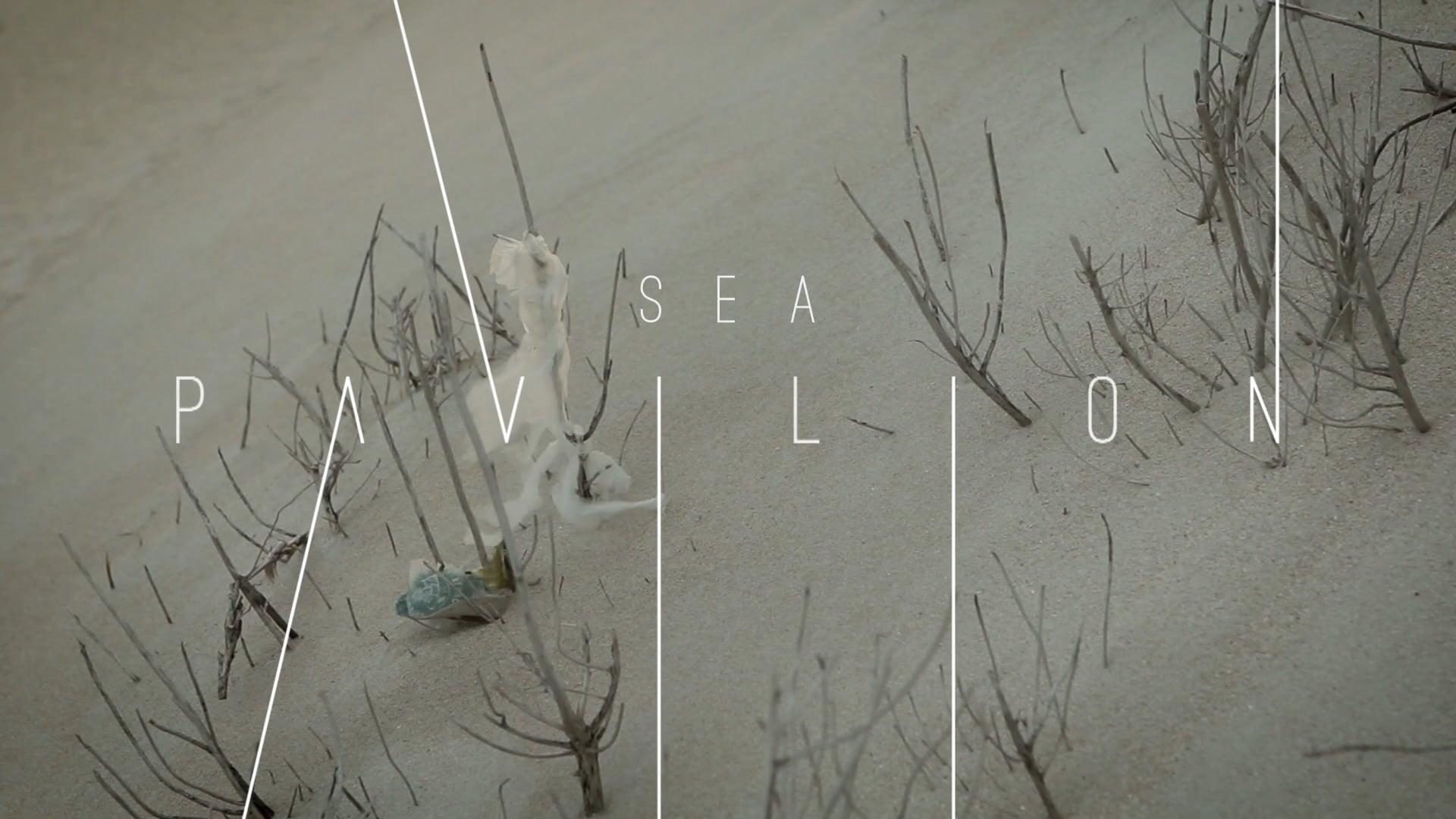 Trailer 2016 Sea Pavillion  ( South Africa )