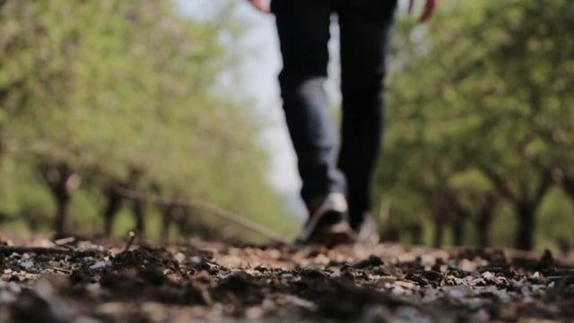 walking, sneakers, nike