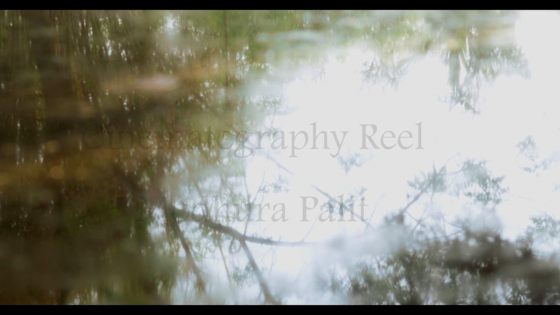 Cinematography Showreel 2015 - Modhura Palit