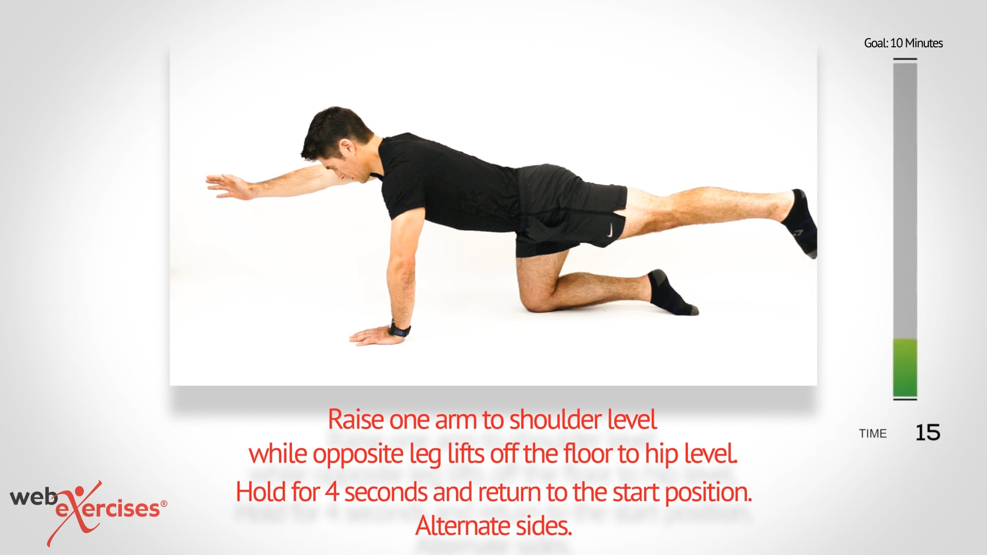 Low Back and Core Strengthening in 10 Minutes.