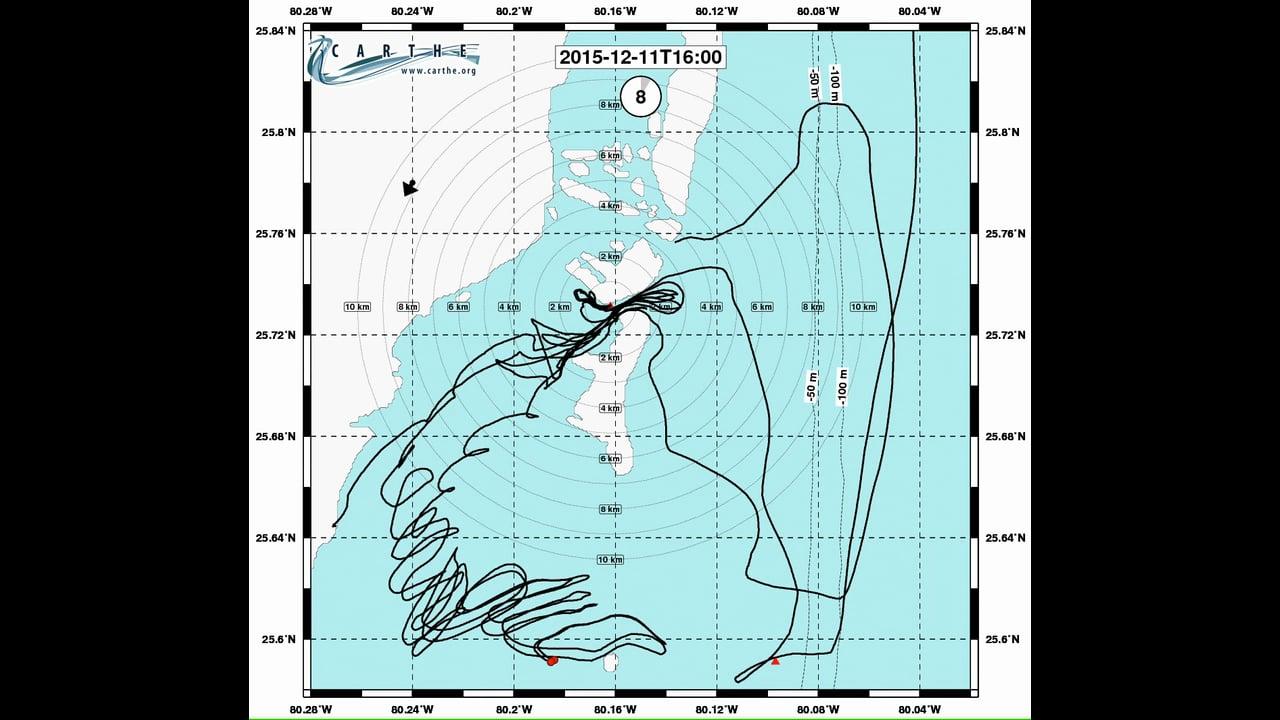 Operation Coral Cascade