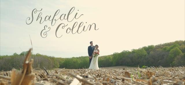Shafali & Collin