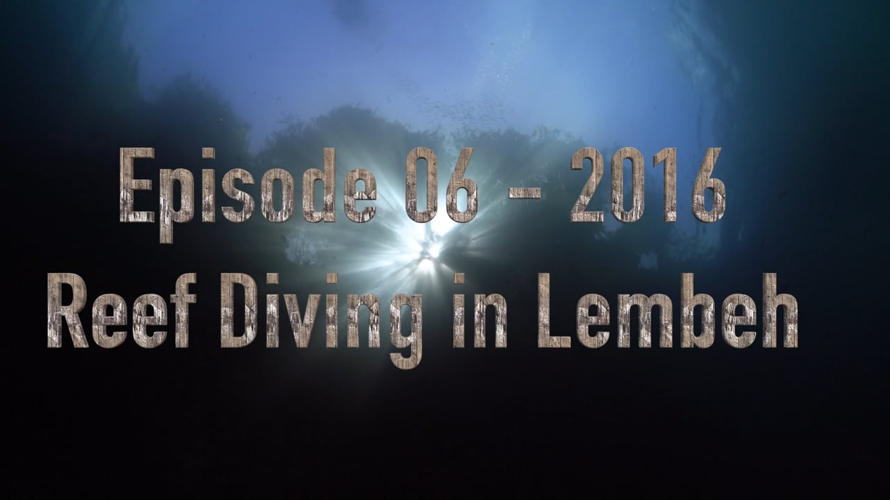 Critters of the Lembeh Strait   Episode 06 -  2016 - Reef Diving in Lembeh