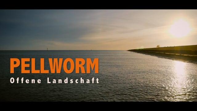 PELLWORM, OFFENE LANDSCHAFT