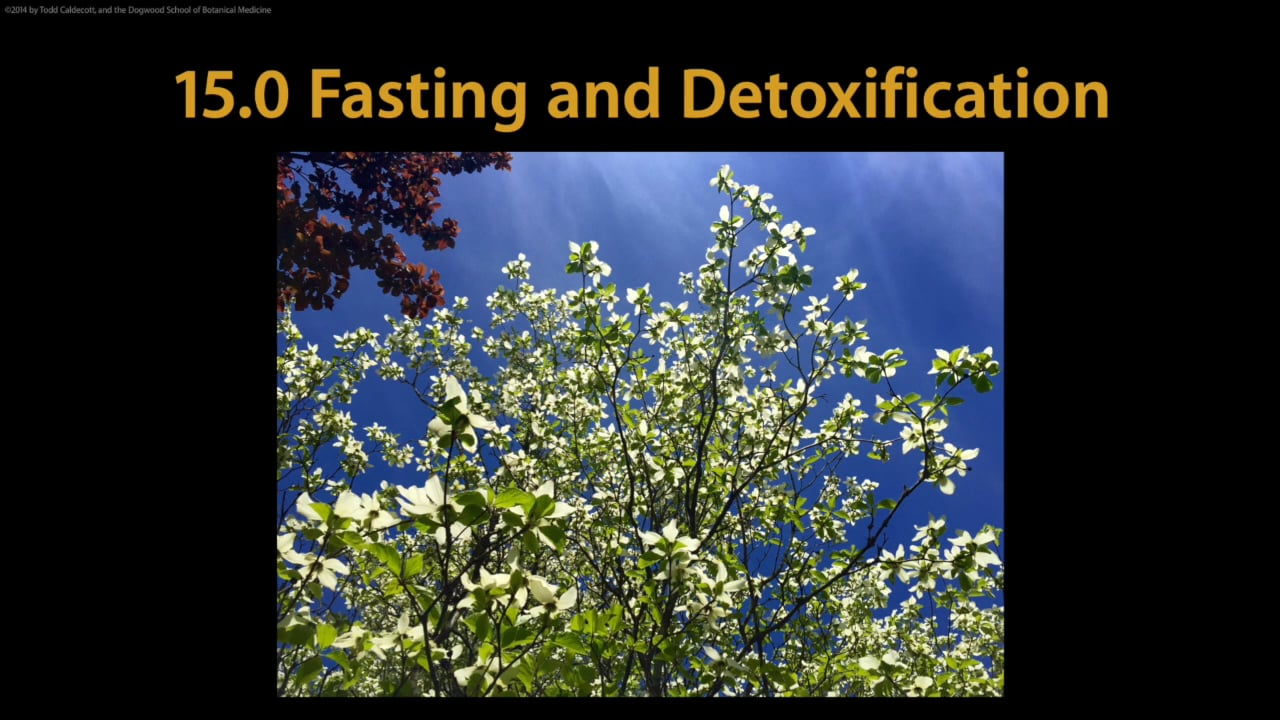 15.0 Fasting and detoxification