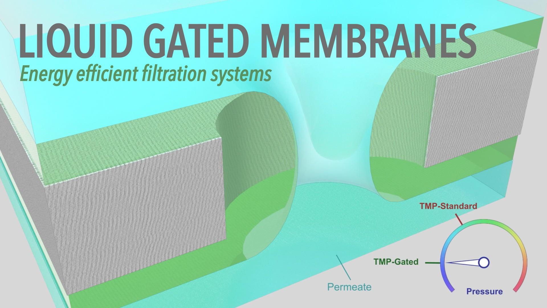 Liquid Gated Membranes