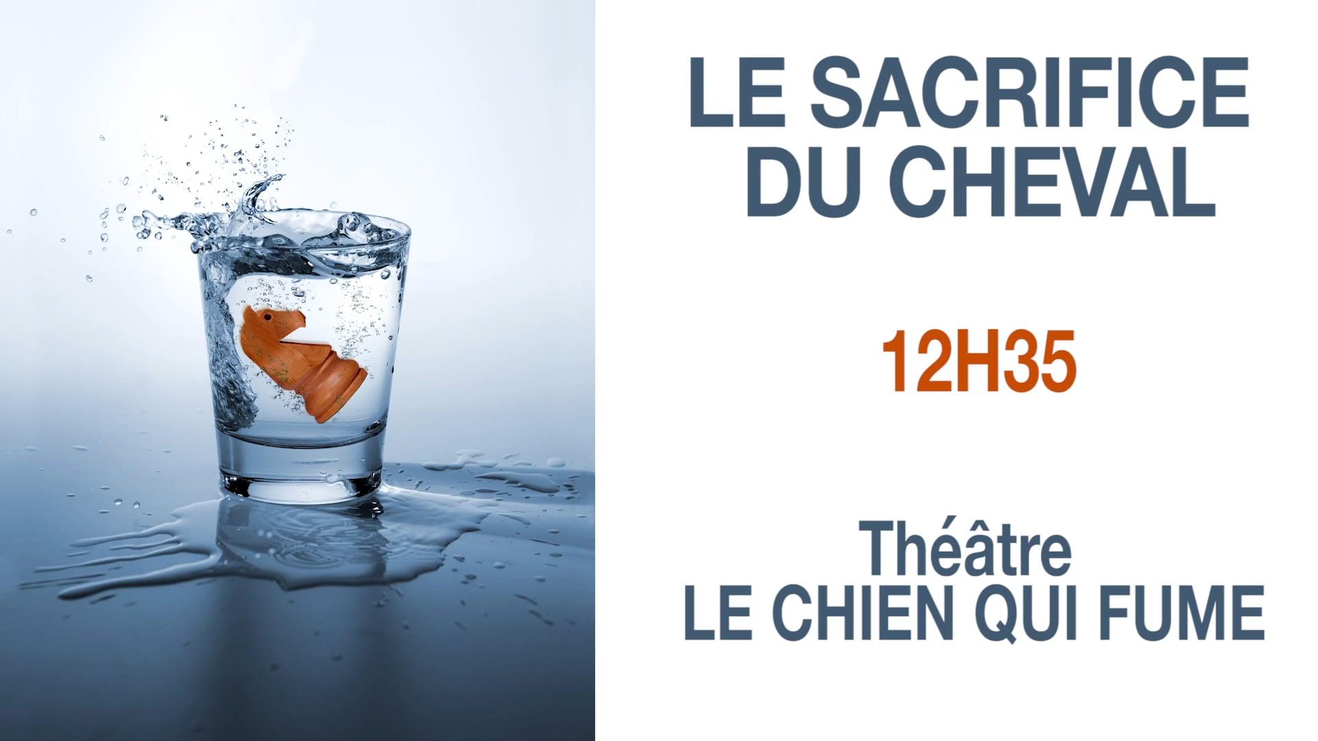 B.A. Le sacrifice du Cheval de Michaël Cohen -Chien qui Fume -Avignon 2016