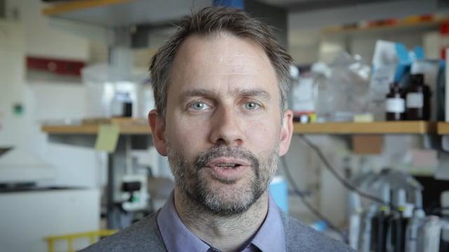 Mattias Forsell, forskarassistent, immunologi