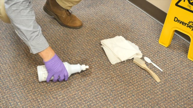 Carpet Spotting Stain Removal   Diversey