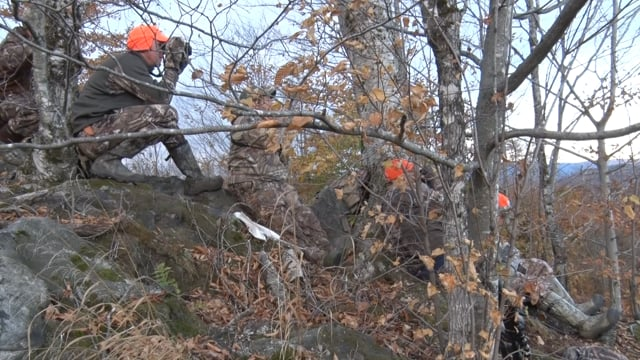 Hunt of A Lifetime Vermont Moose Hunt #2