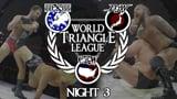 wXw / CZW / BJW World Triangle League 2014 - Night 3
