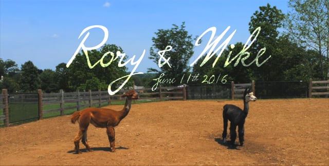 Rory & Mike