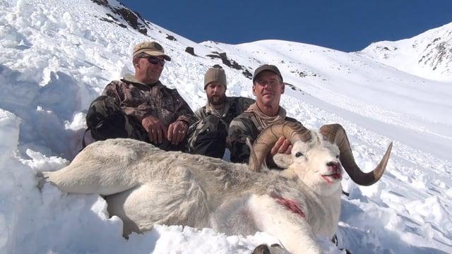 2015 Alaska Dall Sheep Hunt with Don W. & Mark R.