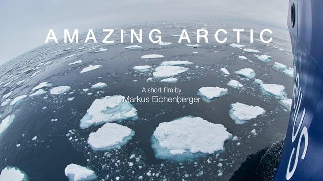 Amazing Arctic