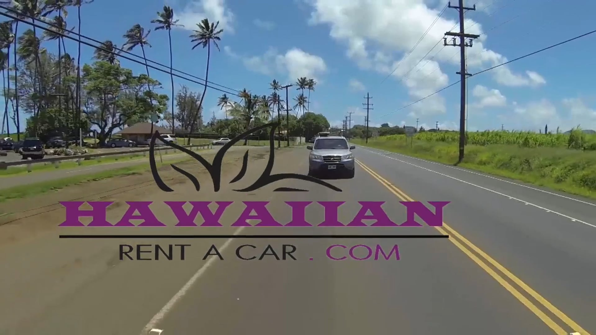 Maui, Hawaii   -    Hawaiian Rent a Car - small business, great local experience